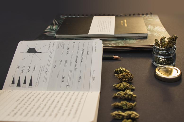Mini book and cannabis photo